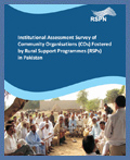 Institutional Assessment survey: December 2010